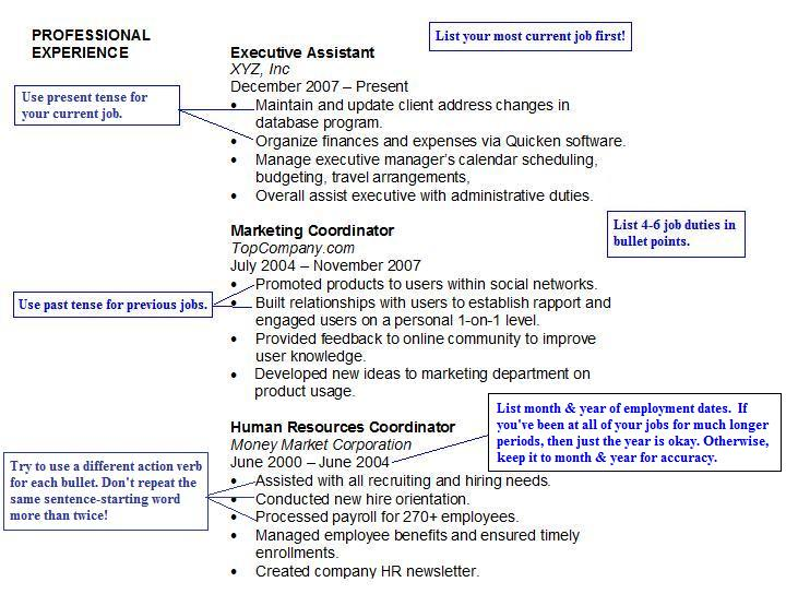 Resume Experience  Resume Sections